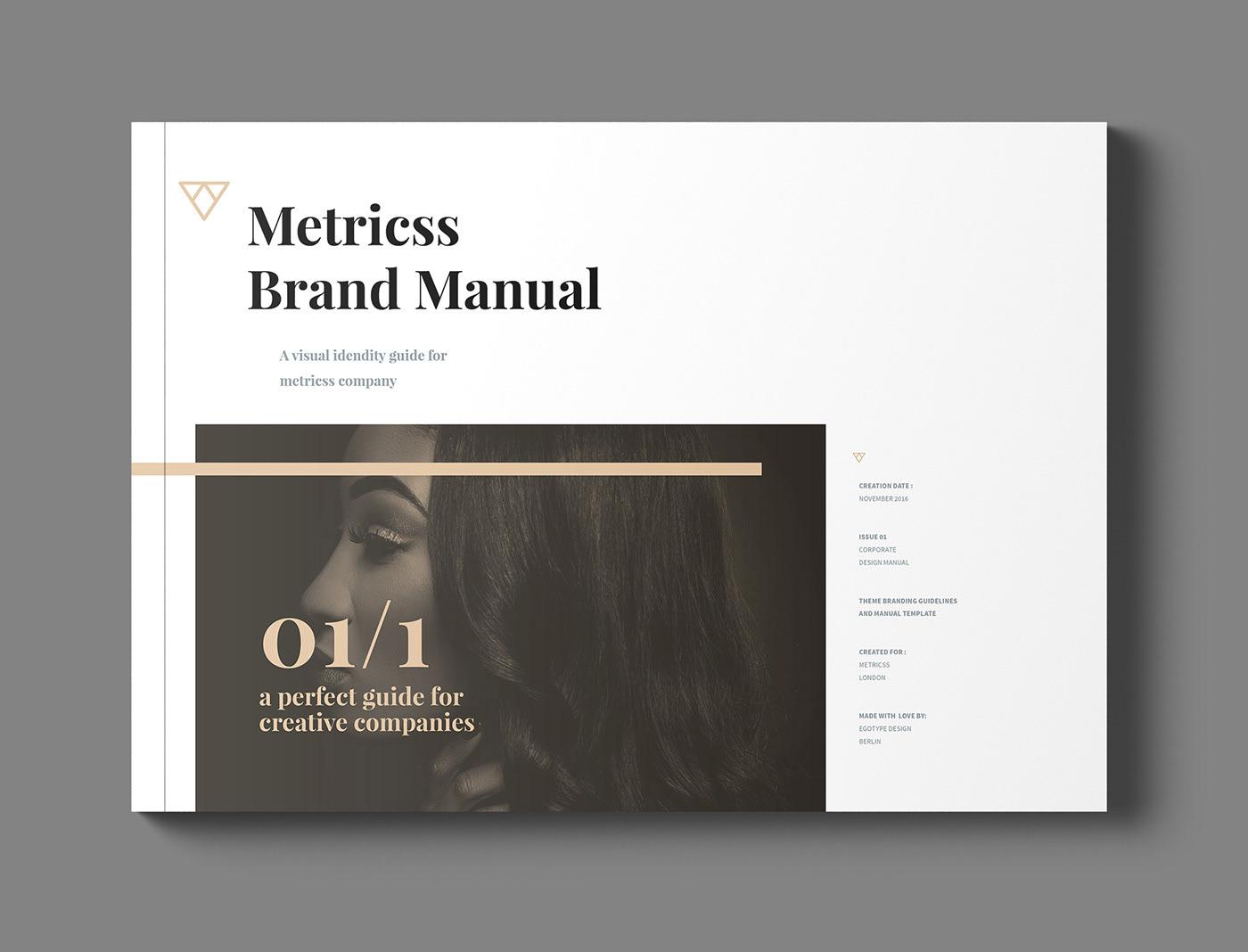 Professional Brand Manual Brochure design