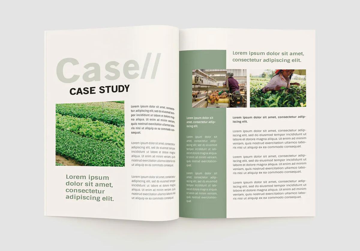 Agriculture brochure design