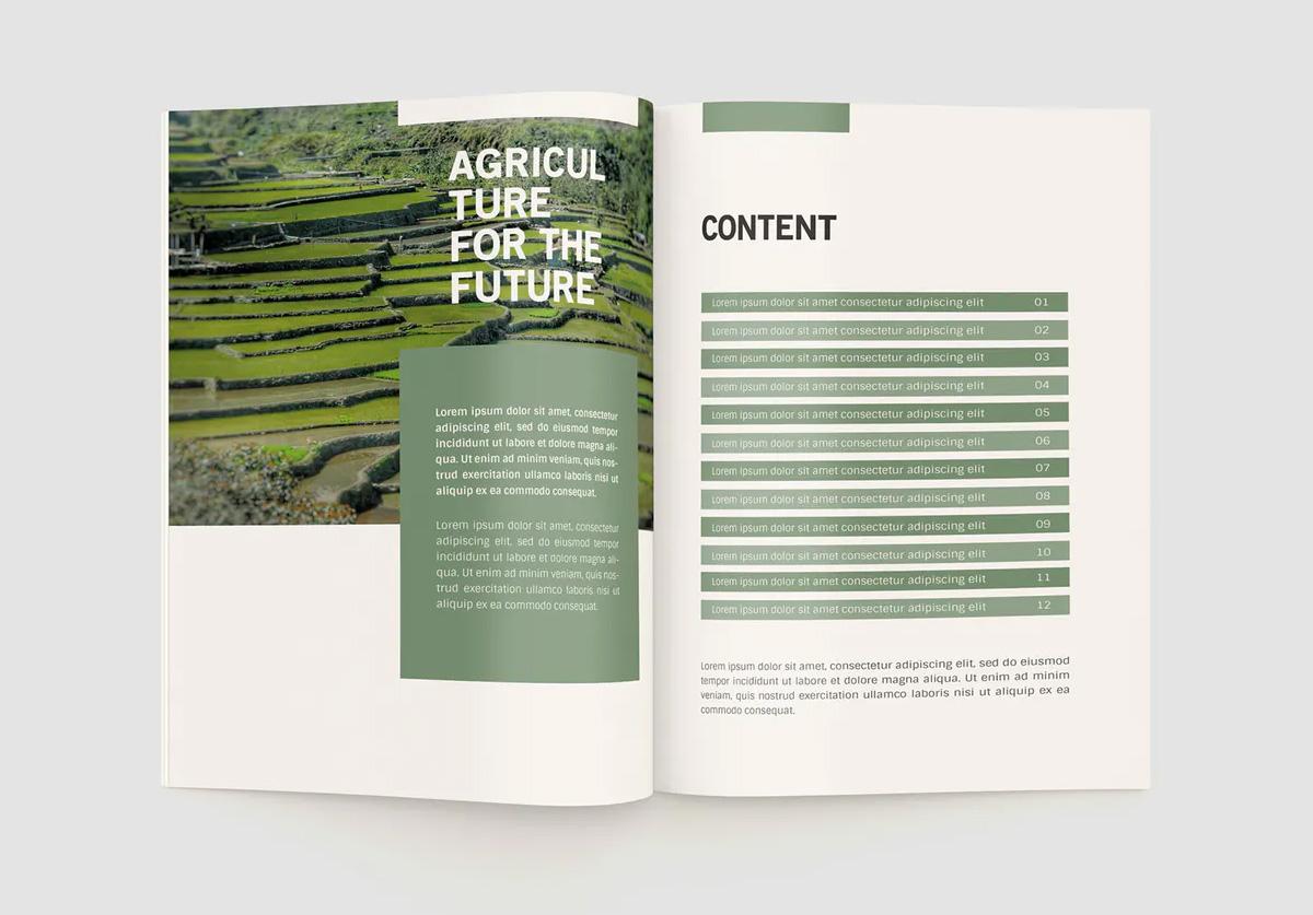 Agriculture company profile brochure