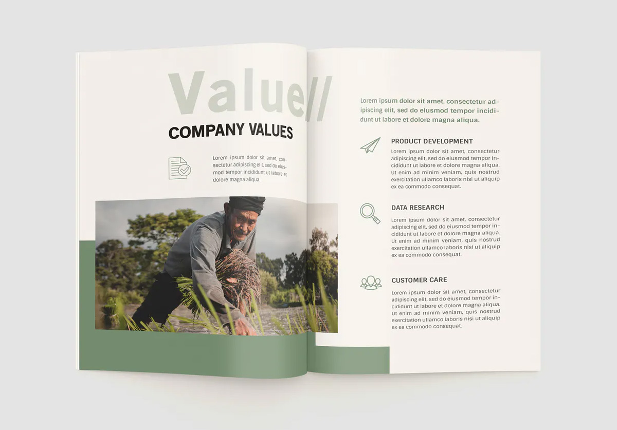 Agriculture company profile layout