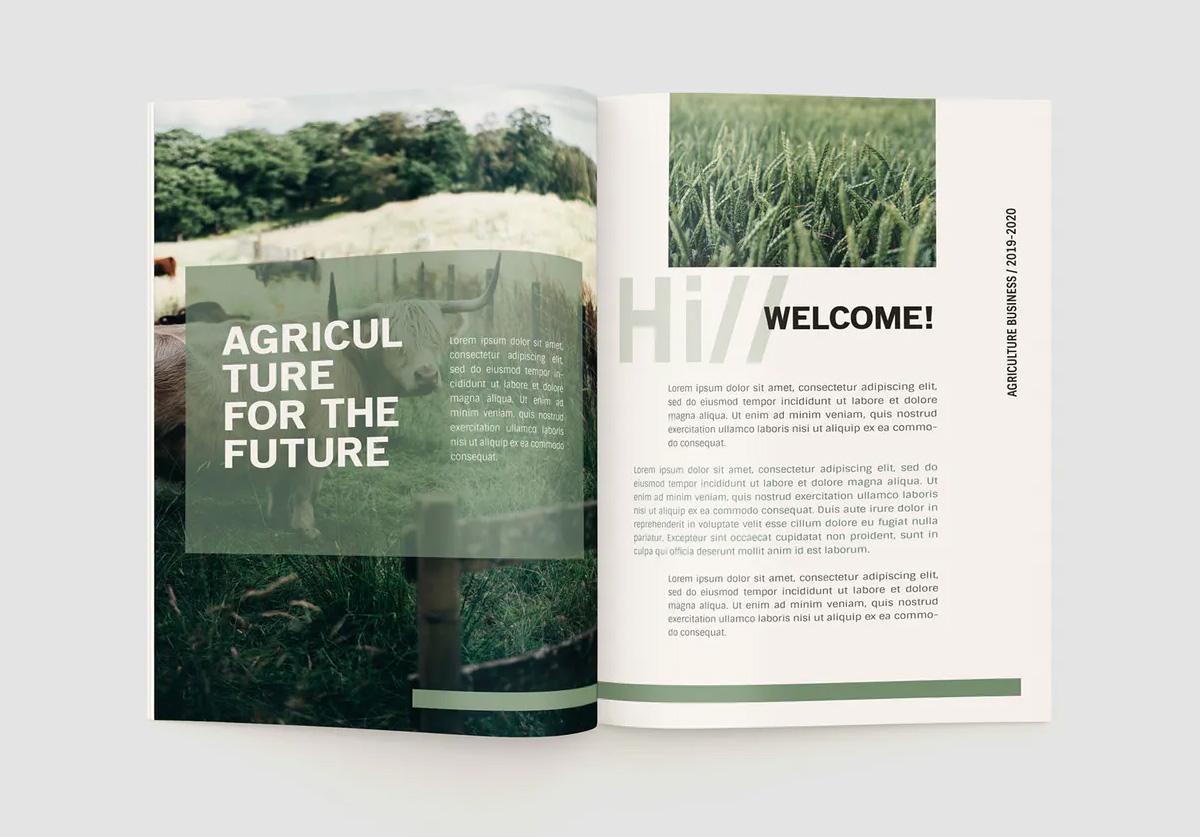 Company profile brochure layout