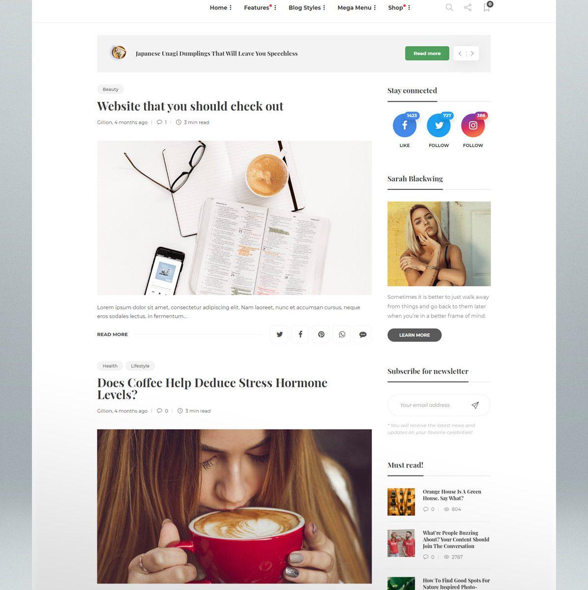 Blog & magazine WordPress AMP theme