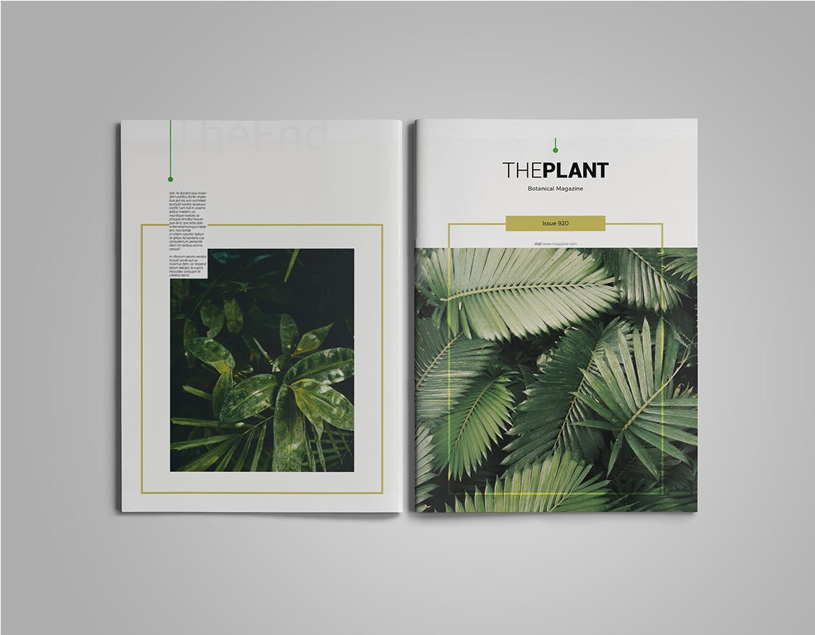 Magazine Template InDesign INDD
