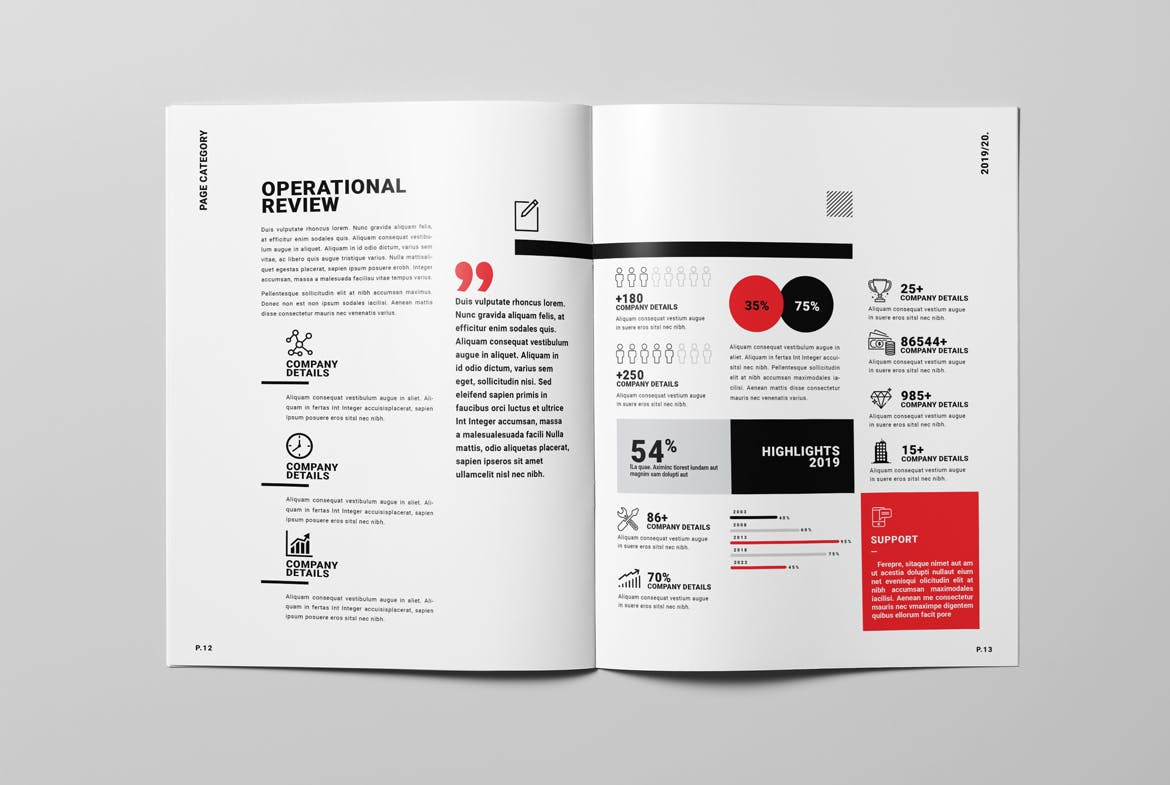 Annual Report Template InDesign